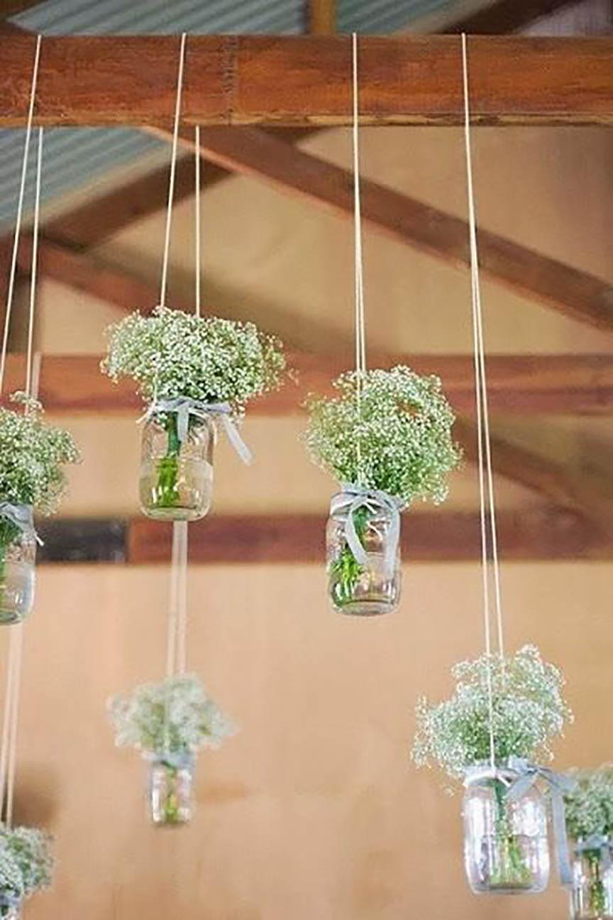 plantas colgadas, yosíquesé